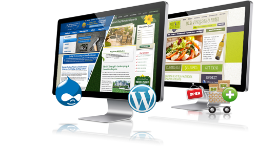 Web Development Trinidad
